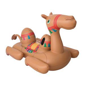 001983-Boia-Camelo-1